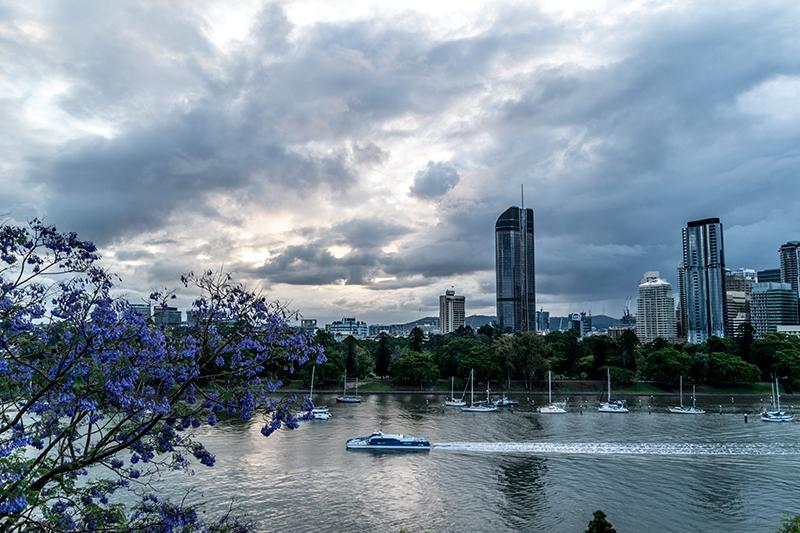 View of skyscrapers Brisbane QLD, Australia